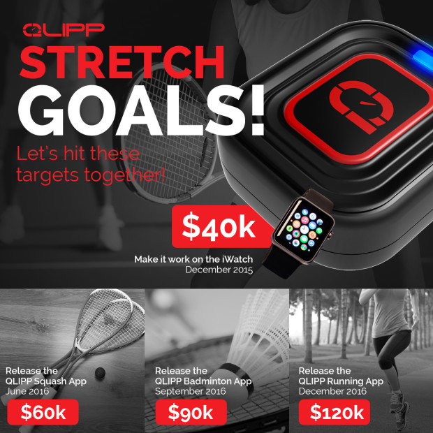QLIPP Stretch goals